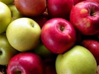 Event of the Month – Stamford Apple Day, 3rd October